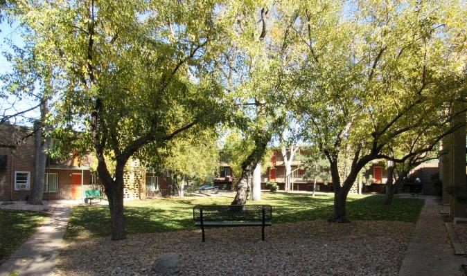 The Ivy At Cheyenne Creek