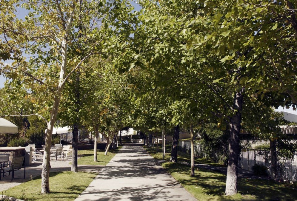 Lakeridge East
