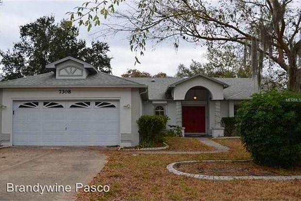 7308 Ashmore Dr - 7308 Ashmore Drive, New Port Richey, FL 34653