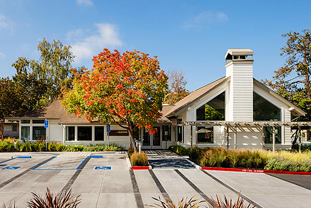 Madrone - 111 N Rengstorff Ave, Mountain View, CA 94043