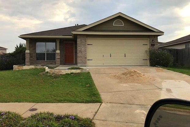 250 Crane Crest - 250 - 250 Crane Crest Drive, New Braunfels, TX 78130