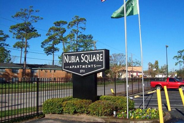 Nubia Square Apartments - 3711 Southmore Blvd, Houston, TX 77004