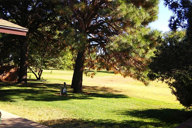 1249 Colonial Pkwy - 1249 Colonial Parkway, Clovis, NM 88101