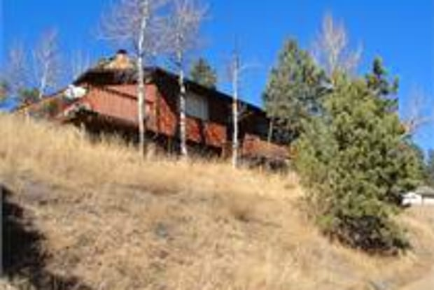 29133 Valley View Road - 29133 Valley View Road, Evergreen, CO 80439