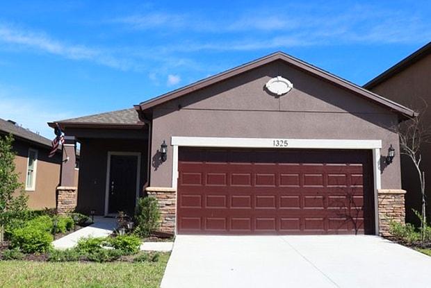 1325 Custer Bayou Street - 1325 Custer Bayou Street, Ruskin, FL 33570