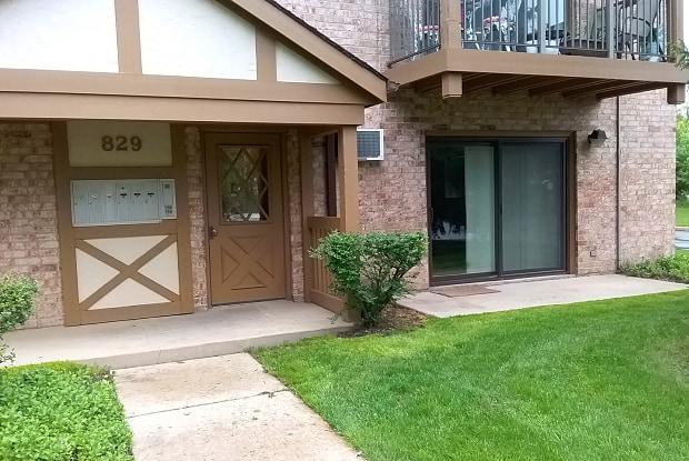 829 South Dwyer Avenue - 829 South Dwyer Avenue, Arlington Heights, IL 60005