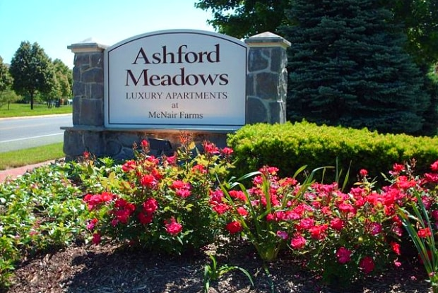 Ashford Meadows Apartments - 2551 Cornelia Rd, McNair, VA 20171