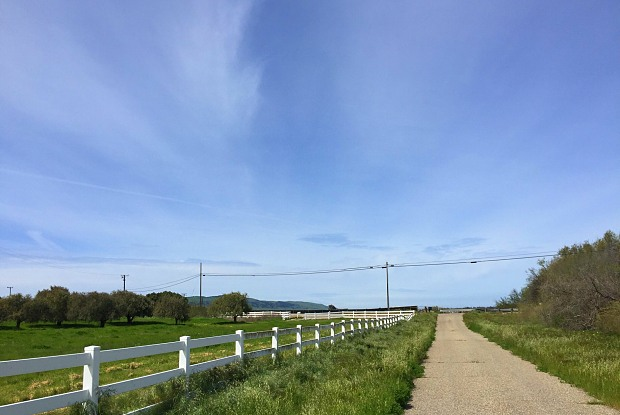 1550 Solomon Road - 1550 Solomon Road, Orcutt, CA 93455
