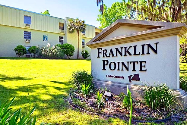 Franklin Pointe Apartments - 631 E Call St, Tallahassee, FL 32301
