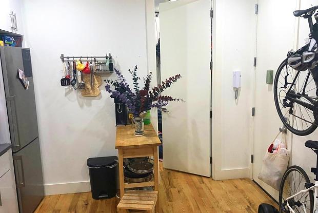 663 Flatbush Avenue - 663 Flatbush Avenue, Brooklyn, NY 11225