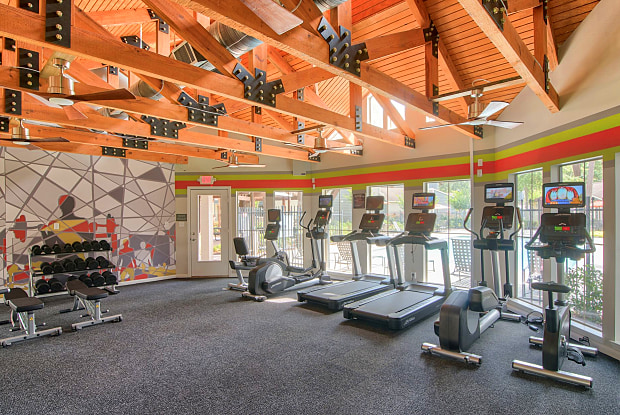 The Point at Cypress Woods - 11800 Grant Rd, Tomball, TX 77429