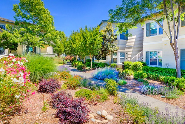 Harvest Park - 2327 Summer Creek Dr, Santa Rosa, CA 95404