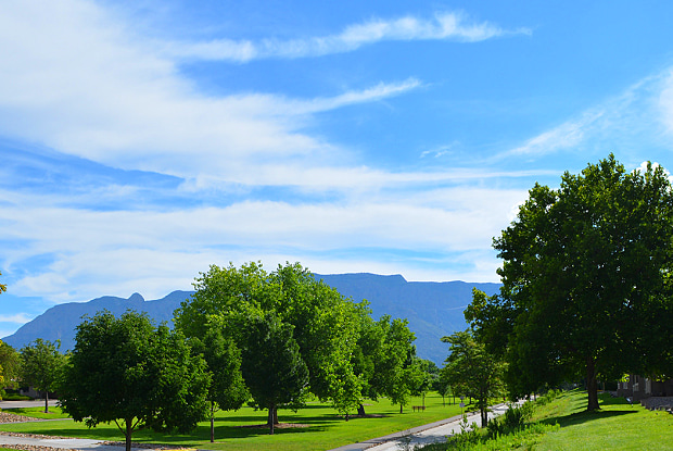 Spring Park - 5801 Eubank Blvd NE, Albuquerque, NM 87111