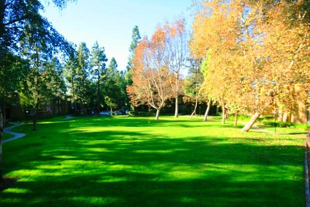Mountain View Apartments - 650 E Bonita Ave, San Dimas, CA 91773