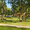 Camden Sugar Grove - 12250 S Kirkwood Rd, Stafford, TX 77477