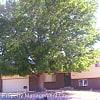 5485 Escondido Dr. - 5485 Escondido Drive, Colorado Springs, CO 80918