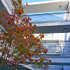 The Carlton - 5535 Carlton Way, Los Angeles, CA 90028