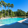 The Park at Knightsbridge - 10208 Hawthorne Place Dr, Brandon, FL 33578