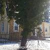 4718 Norwood Ave - 4718 Norwood Avenue, Baltimore, MD 21207