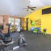 Stoneleigh Apartments - 2626 Thousand Oaks Dr, San Antonio, TX 78232