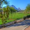 7893 E JOSHUA TREE Lane - 7893 East Joshua Tree Lane, Scottsdale, AZ 85250