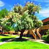 Landon Park Apartment Homes - 100 S Sable Blvd, Aurora, CO 80012