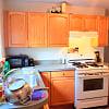 59 Saxton St 1 - 59 Saxton St, Boston, MA 02125