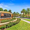 Trinity Club Apartments - 10800 Torino Dr, Trinity, FL 34655