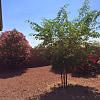 23769 W La Canada Blvd - 23769 West La Canada Boulevard, Buckeye, AZ 85396