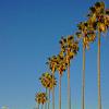 8110 El Paseo Grande - 8110 El Paseo Grande, San Diego, CA 92037