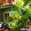 6526 40th Avenue South West - 6526 40th Avenue Southwest, Seattle, WA 98136