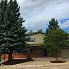 445 Silver Spring Cir - 445 Silver Spring Circle, Colorado Springs, CO 80919
