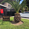 Merwin Apartments - 4822 Merwin Street, Houston, TX 77027