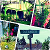 24135 Olander Way - 24135 Oleander Way, Laguna Niguel, CA 92677