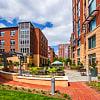 Post Carlyle Square - 501 Holland Ln, Alexandria, VA 22314