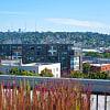 Wilcox - 2003 NW 57th St, Seattle, WA 98107