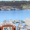 1611 on Lake Union - 1611 8th Ave N, Seattle, WA 98109