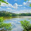 Edgewater on Lake Lynn - 3230 Stream Side Rd, Raleigh, NC 27613