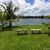 14840 E Lewis Rd - 14840 Lewis Rd, Miami Lakes, FL 33014