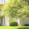 The Wellington Apartments - 17210 County Road 6, Plymouth, MN 55447