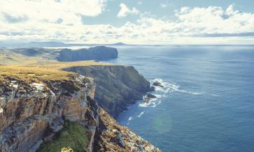 Les auteurs irlandais les plus célèbres
