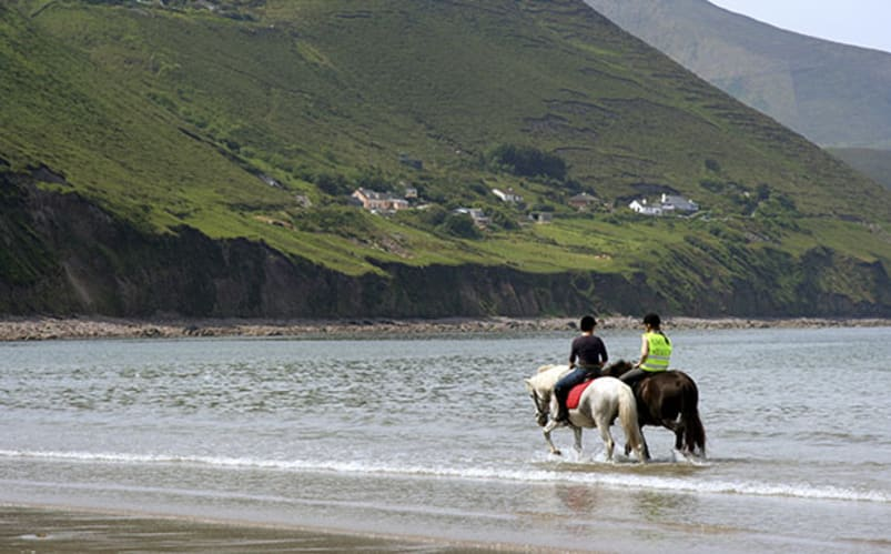 Équitation dans une famille irlandaise