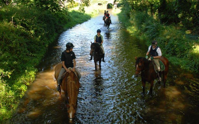Equitation à Tipperary