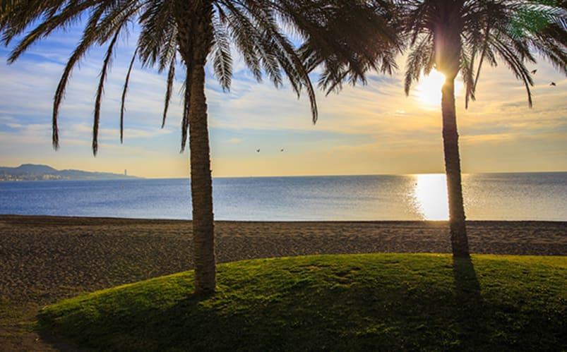 Immersion totale à Malaga