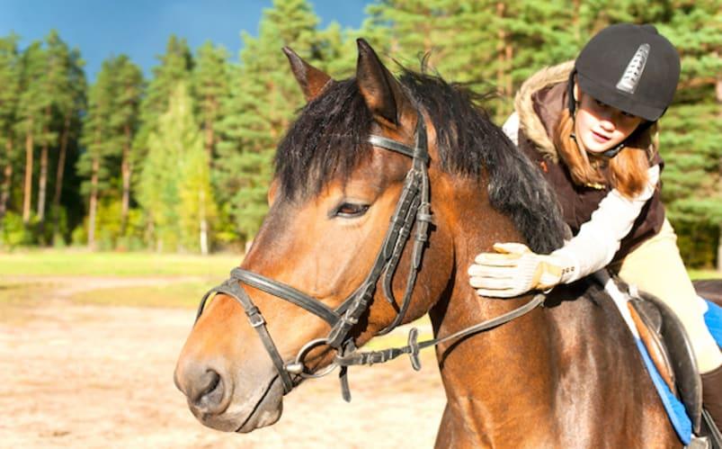 Pleasant Grove - Équitation