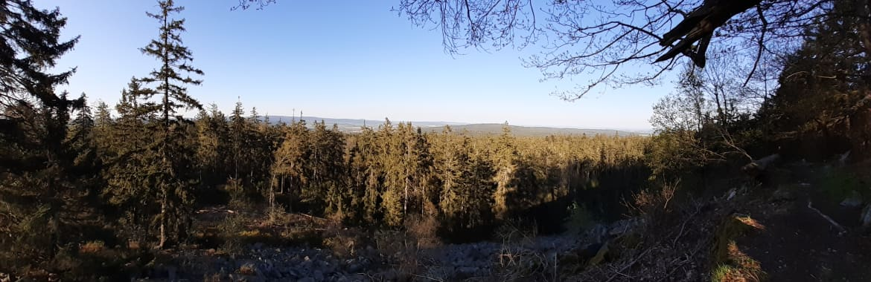 Panorama-tremsin