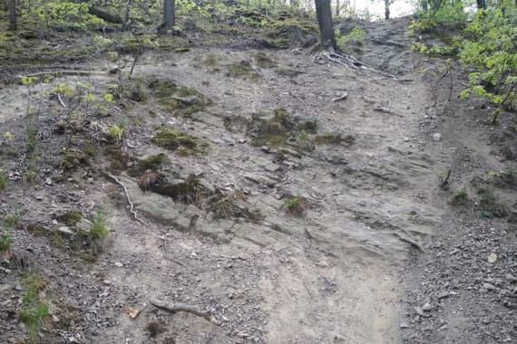Trail-1-nov