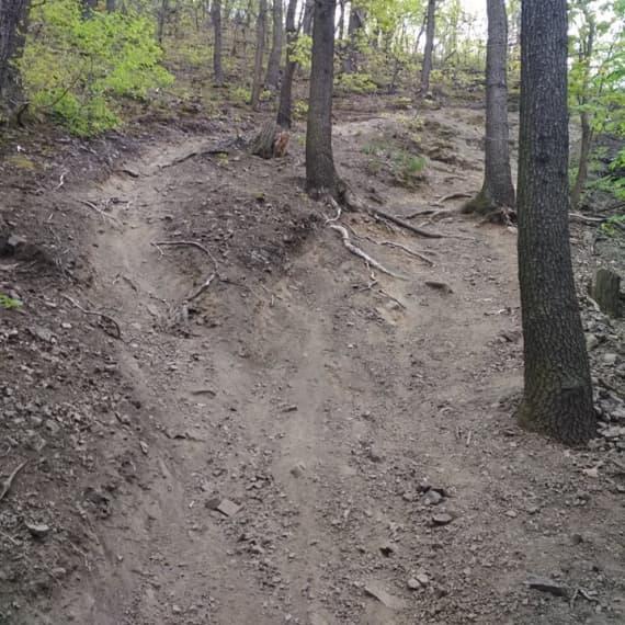 Trail-2-nov