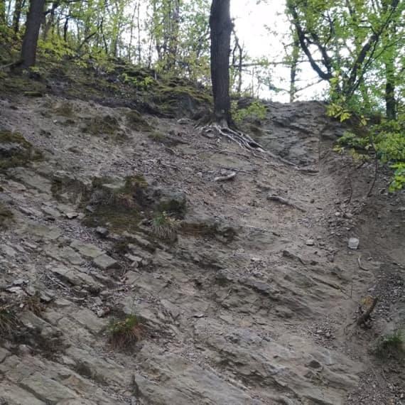 Trail-4-nynejsi-nov