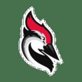 Woodpecker.co
